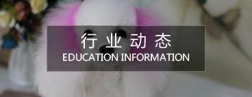 宠物美容师培训学校