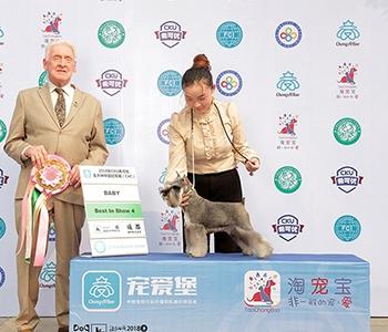 2018年Dog Show成都赛场获嘉奖