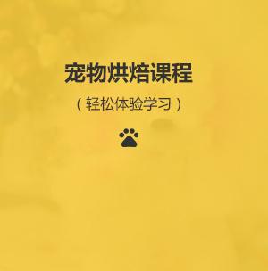 重庆宠物培训
